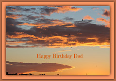 Happy Birthday Papa (bigbrowneyez) Tags: tribute dedication dadsbirthday love heart sad loss memory memories jan92017 conamore memoria festa thoughts thoughtful dad mydad miopapa sunset clouds cielo sky beautiful bello bellissimo fabulous striking stunning golds golden oro amazing awesome special heartfelt dof shapes design nature natura nuvole happybirthdaydad buoncompleannopapa frame cornice birds lying capricorn zodiacsign