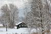 Fischerhütte am See (Ernst_P.) Tags: aut inzing österreich tirol winter schnee fischerhütte haus hütte