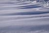 Drifts (hey ~ it's me lea) Tags: snowdrift snow white drift cold winter alberta canada calgary snowy
