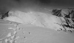 Footsteps in the snow (Goran Joka) Tags: footstepsinthesnow footsteps traces snow snowymountains clouds blackwhite blackandwhite monochrome romania carpathians nature landscape outdoor winter