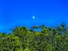 Luna 2017 (nava22mx) Tags: taxco guerrero mexico 2017 nava22mx luna cerros arboles paisajes