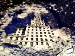 Wandering around Telefónica building, Gran Vía, in my world of dreams, the world upside down... Good night! . #ShotOnIPhone6S #Snapseed (luisonrh) Tags: digital documentary reflection water puddle puddlegram architecture arquitectura mobile iphoneography shotoniphone6s madrid upsidedown