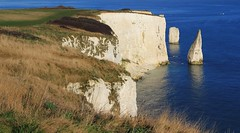 The Pinnacles - Dorset050117  (2) (Richard Collier - Wildlife and Travel Photography) Tags: dorset seascape landscape southcoast coastal coastalcliffs pinnacles