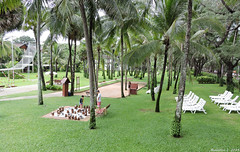 Club Med Resort, Phuket, Thailand (Merrillie) Tags: travel trees people green nature palms thailand nikon holidays chess resort palmtrees coolpix phuket katabeach p600 nikoncoolpixp600 clubmedresort clubmedresortphuket
