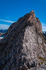 Cresta (faltimiras) Tags: circo glaciar pyrenees pequeo petit pirineos pirineus cresta circ gavarnie glacera vignemale tallon marbore oulettes tailon viamala vinyamala