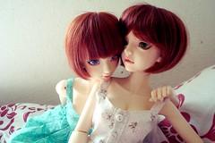 Sisterhood (daggry_saga) Tags: switch doll bjd merry mdr shiho sng balljointeddoll ajbd merrydollround