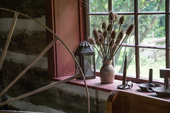 Teasel Bouquet (Light Collector) Tags: ontario canada window interior jar lantern keene spinningwheel candlesticks langpioneervillage logwall fifecabin