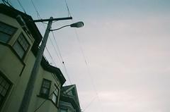 San Francisco (Laura-Lynn Petrick) Tags: sanfrancisco goldengatepark usa northerncalifornia cali america northshore series sanfran sanfranciscocalifornia insanfrancisco californialandscape californiastate californiatour insanfran goldengateparkcalifornia lauralynnpetrickamerica lauralynnpetrickbudweiser lauralynnpetrick35mm lauralynnpetricksanfrancisco lauralynnpetricknortherncalifornia budweisersanfrancisco lauralynnpetrickcaliforniadreaming justindesrosiers