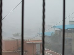 Heavy rains with strong wind in Mumbai (paragdgala) Tags: rainyday thane strongwinds torrentialrains