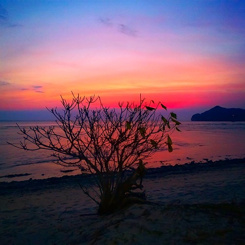 Sunset at Sekongkang West Sumbawa Sumbawa Island NTB, Indonesia @folkindonesia @ngobrolkota  #indonesia #u_phy #infotourismindo #lumia1020 #switcheyesnap #WPphoto @natgeopro #nokia #idlumiaography #natgeo #instanusantara  #kofipon #lumia #nothingbutanokia