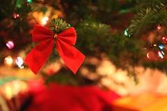 Merry Christmas, Flickr! [[Explored]] (AlisAquilae) Tags: christmas christmastime holiday holidays flickr tree red bow decoration ornament december presents family pine branch peace love joy 40mm canon canon5dmarkiii merry celebrate