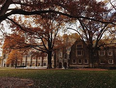 Late fall in the #GothicWonderland. #pictureduke 📷: @lindapagliarusco (Duke University) Tags: ifttt instagram duke university