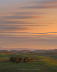 Subtle (Bob Bowman Photography) Tags: landscape clouds sky hills green trees light sunrise morning california northerncalifornia sonomacounty marincounty northbay
