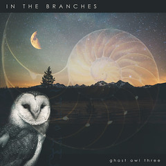 In The Branches - Ghost Owl Three (shanecotee) Tags: ambient ambientmusic darkambient guitar instrumental cover artwork coverart art photoshop owl psychedelic hypnogogic drone postrock postambient loop looping atmospheric atmosphere idaho artist arists music oregon pnw portland