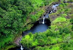 Rainforest creek (PeterCH51) Tags: hawaii bigisland hilo forest rainforest creek peterch51 aerialview