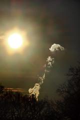 Vormittagshimmel im Januar (02) (Rüdiger Stehn) Tags: sonne himmel 2000er 2000s 2017 europa mitteleuropa deutschland norddeutschland germany schleswigholstein altenholz altenholzstift baum wolken polarisationsfilter polfilter filter rauch canoneos550d