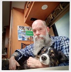 1/52 - Close Quarters (jayvan) Tags: dash me aussie australianshepherd dog buddy rv closequarters lapdog phoenix roadtrip arizona 52wfd 52weeksfordogs