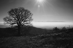 Mountain view in Northern Macedonia. (pmedwards1966) Tags: kokino silhouette tree blackandwhite fog mountain macedonia landscape