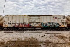 (o texano) Tags: houston texas graffiti trains freights bench benching dzone wyse d30 dts defthreats a2m adikts
