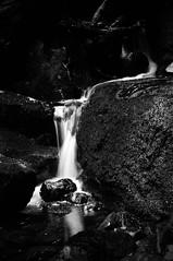 Creekton Falls (Photo perspective) Tags: creektonfalls tasmania waterfall