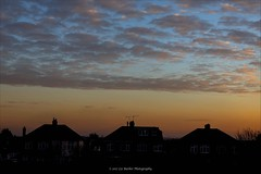 18/365 (Liz Barber) Tags: sunset rooftops roofs clouds