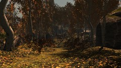 Lost (alexandriabrangwin) Tags: alexandriabrangwin secondlife 3d cgi computer graphics virtual world photography forest leaves autumn orange red hues beautiful scene bend path dirt grass midday shadows wilderness