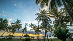 pirogue (imagine_reality) Tags: beach palm tree sunset