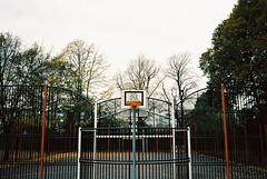 LH291116242362-18 (glenn weaver) Tags: street basketball totterdown bristol uk court trees park leica m6 ektar 100 pushed 400 100400 2 canadian film lab cfl