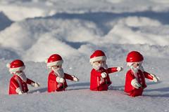 on the way (michaelmuc79) Tags: playmobil toys spielzeug winter funny fun snow schnee white canon santa claus weihnnachtsmann christmas xmas red outdoor