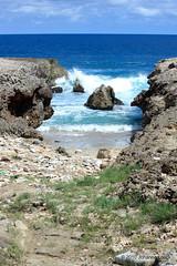 "Arikok National Park Coast (Aruba) (runintherain) Tags: runintherain canon450dxsi canon canonxsi caribbean lesserantilles island flora water ocean atlanticocean sea seaside coast shore waves nature outdoor beach aruba ""netherlands"" abcislands dutchcaribbean caribbeansea"