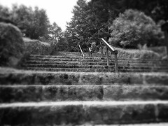 The way up (TMimages PDX) Tags: blackandwhite usa stairs portland geotagged outdoor places softfocus iphoneography