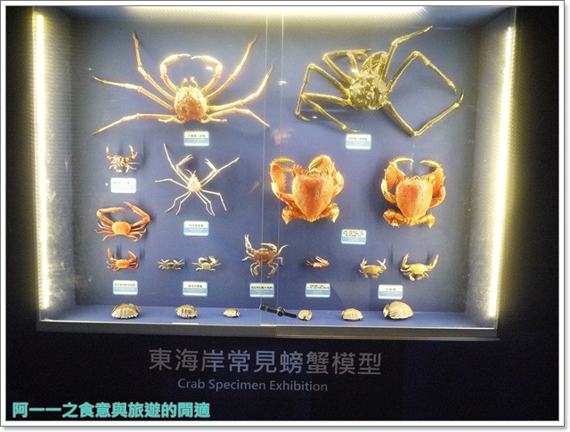 台東成功旅遊景點都歷遊客中心親子寓教於樂阿一一image025