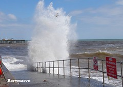 Caught in the Breakdown (Rorymacve Part II) Tags: ocean sea england water person waves britain seagull wave estuary devon channel englishchannel teignmouth lymebay teignmouthseawall
