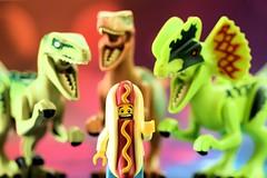 Dino Trio: We luv Giant Hotdog!!! (Lesgo LEGO Foto!) Tags: dog man hot cute love fun toy toys hotdog cool nikon lego dinosaur echo charlie raptor minifig collectible minifigs nikkor omg jurassic dinosaurs raptors velociraptor collectable minifigure dilophosaurus minifigures velociraptors hotdogman d5300 legophotography legography collectibleminifigures collectableminifigure jurassicworld 60mmf28drmicro