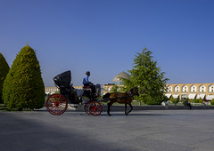 Horse Cart Ride On The Naqsh-e Jahan Imam Square, Isfahan Province, Isfahan, Iran (Eric Lafforgue) Tags: city horizontal square outdoors photography asia day adult iran persia unescoworldheritagesite copyspace orient esfahan adultsonly oneperson isfahan imamsquare persianculture ispahan traveldestinations famousplace  onemanonly  colourimage 1people  iro isfahanprovince  royalsquare sepahan unrecognizableperson spadana  hispahan mesdjidishah iran150066