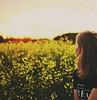 (annaariina) Tags: sunset summer portrait sun girl canon summertime kesä canon50mmf14 vastavalo henkilökuva finnishgirl summergirl valokuvaus henkilökuvaus canoneos550d