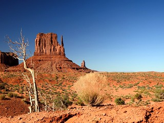 1323ex  P900  Monument Valley contrasts
