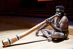 Traditional Aboriginal Performer