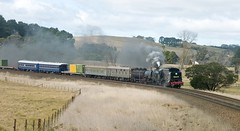 6029, on 9S91, approaching Werai, Main South, NSW, 3rd August, 2015. (garratt3) Tags: aus digital pentax rail railroad steam takumar tourist train 6029 railpage:class=85 railpage:loco=6029 rpaunswad60class rpaunswad60class6029 newsouthwalescoaltrains mainsouth nswcoaltrains standardgauge arhs 60class nswheritage steamloco railway railways trains locomotive garratt australia railfan steamlocomotive steampower nswgr newsouthwales