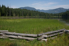 Lost Lake Vista (David J. Greer) Tags: morning trees summer vacation sun mountain lake mountains tree green grass sunshine fence lost whistler bc sunny resort toad sanctuary
