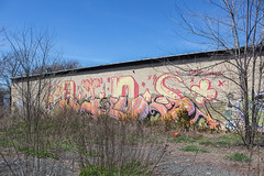 AIDS Crew (NJphotograffer) Tags: graffiti graff new jersey nj aids crew roller hybrid ntel disto distort goa