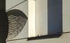UK 2016 706 (Visualística) Tags: uk unitedkingdom reinounido england inglaterra gb granbretaña greatbritain londres london londra ciudad city stadt urbano urban