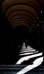 [ Percorsi predefiniti - Preconditioned ways ] DSC_0288.2.jinkoll (jinkoll) Tags: arcade woman shadows people street platform sunny silhouette bologna geometry passing human couple elderly colonnade gallery viafarini portici