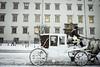 (elczapski) Tags: winter wien vienna austria europe österreich travel snow schnee hofburg palace horse fiaker