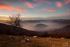 sempre I Colmi (Andrea Moraschetti Photography) Tags: ngc pink clouds sky lake iseo iseolake canon italy view landscape island mountains tree monteisola sebino brescia viewfromabove summit green winter