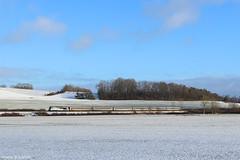 Intercités dans la neige! (pierre141f282) Tags: cc 72000 neige 72074 bricon hautemarne