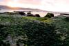 Playa de Las Canteras (María Neupavert) Tags: playa beach sunset atardecer gran canaria las palmas canteras islas canarias