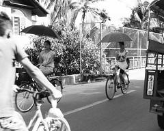 Poise (Tim Roper) Tags: asia myanmar burma street blackandwhite girls umbrella riding bicycle