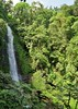 IMG_3633s (JoStof) Tags: indonesia bali munduk hike waterfall jungle indonesië idn