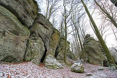 Müllerthal Trail (merijnloeve) Tags: müllerthal trail luxembourg luxemburg rocks landscape berdorf echternach landschap mountain hills snow sneeuw snowscape beuk fagus